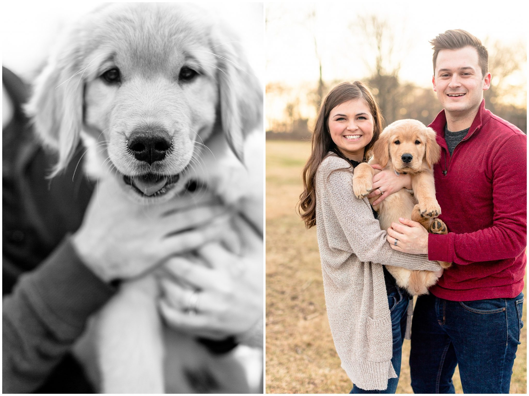 Engagement Photo Outfit Inspo with Golden Retriever Puppy Normal Illinois_0076