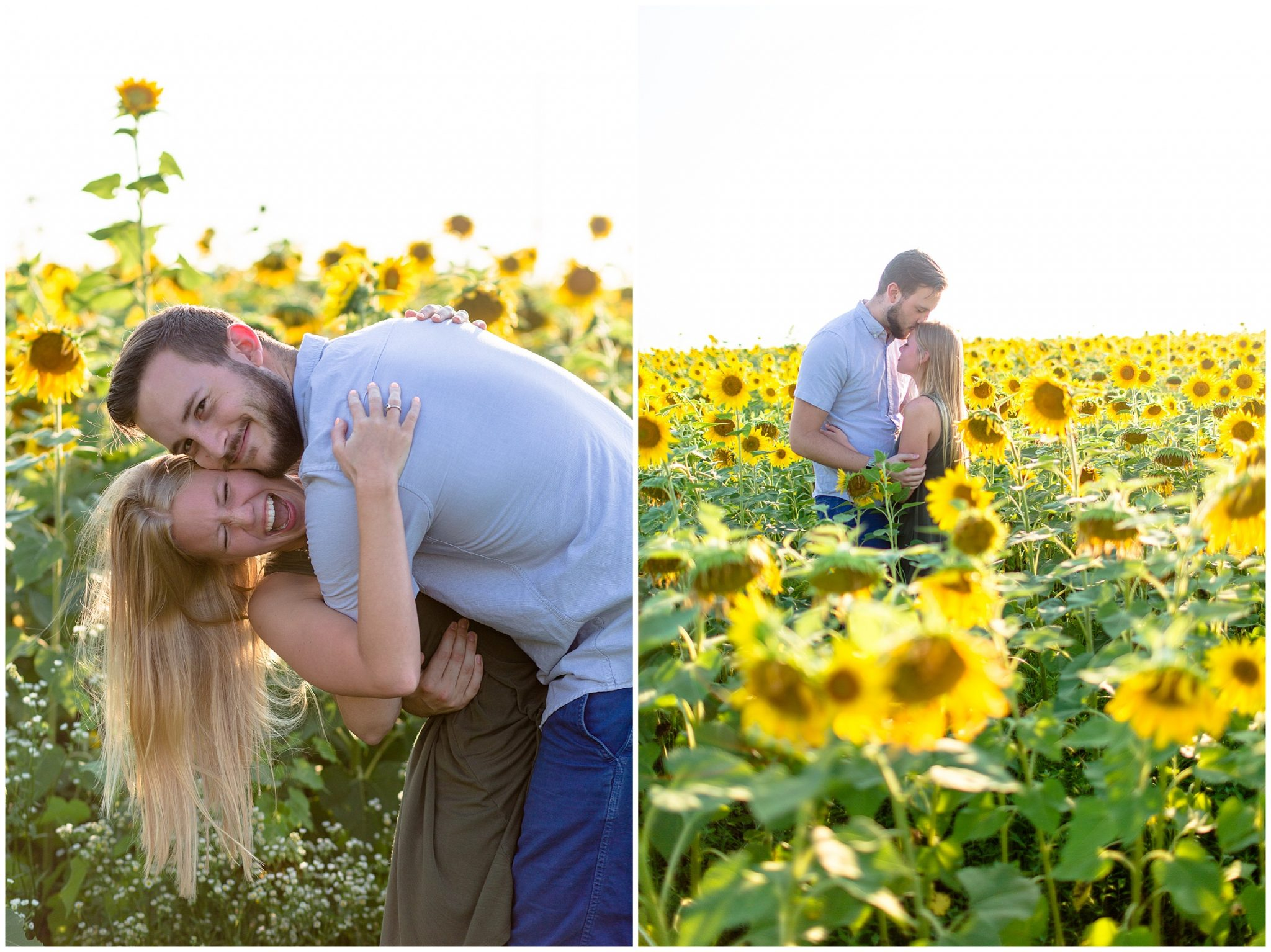 Wild Sunflower Field Session_0072