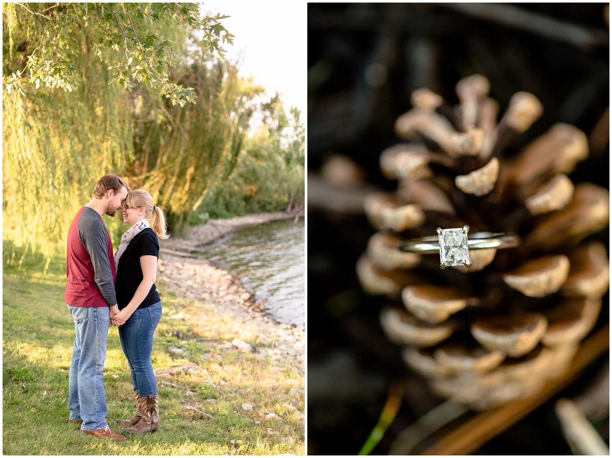 Weeping Willow Sunset Engagement Session_0113